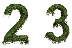 Ivy Numbers Stock Footage