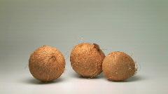 Coconuts Stock Footage