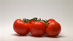 Tomatoes - stock footage
