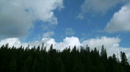 Stock Video Footage of Clouds over forest time lapse