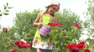 In the garden Stock Footage