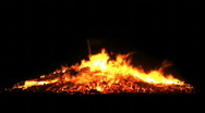 Fire burning flame branches big campfire HD Stock Footage
