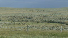 P01199 Rangeland in the Great Plains Stock Footage
