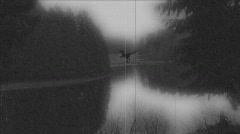 Creature near the Lake 1 Stock Footage