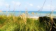 Stock Video Footage of Dune Beach Path Florida Keys