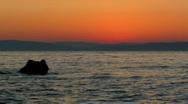 Marine sunrise Stock Footage