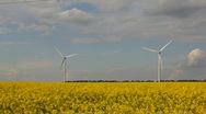 Alternative energy on yellow field,time lapse Stock Footage