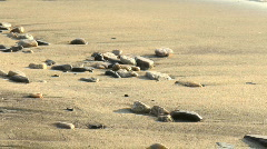 Stock Video Footage of shore with sand