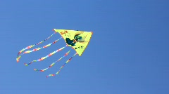 Kite Stock Footage
