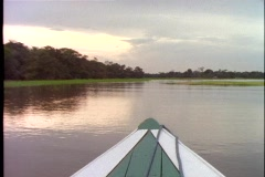 Amazon River, small  boat ride, POV, bow through the marsh and rain forest - stock footage