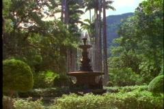 Rio de Janeiro, Botanical Gardens, medium wide, fountain, tilt up royal palms Stock Footage