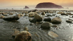 Oregon Coast Stream-HD Stock Footage