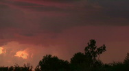 Stock Video Footage of Lightning Sunset Trees