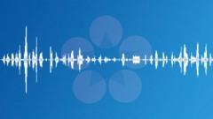 Camel grumbling - monster sound Sound Effect