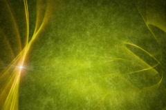 Olive Vine Reveal Background Stock Footage
