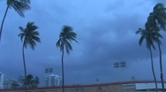 Stock Video Footage of Lightning - Storm Fiona - Thunder Lightning Palm Trees with audio
