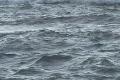 Seas with no horizon Footage