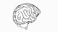 Looping Brain Animation 06 Stock Footage