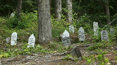 Boothill Skagway gold ruch cemetery Alaska P HD 0115 Stock Footage