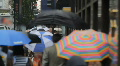 Pedestrians With Umbrellas, New York Street Footage