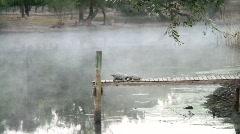 Foggy Pond Stock Footage
