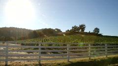 Vineyard White Picket Fence - stock footage