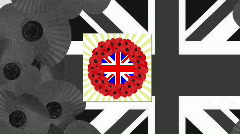 Remembrance sunday montage Stock Footage