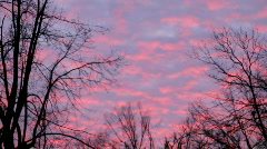 Fiery Red Clouds Timelapse Stock Footage