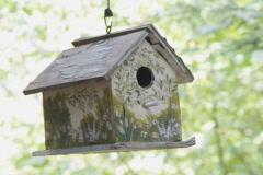 Birdhouse. SD. Stock Footage