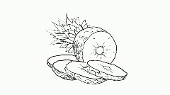 Drawing of a ananas, HD Stock Footage