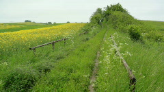 Rural German Landcape in early Summer Stock Footage