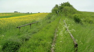 Stock Video Footage of Rural German Landcape in early Summer
