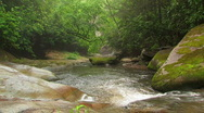 Stock Video Footage of Cascading Mountain River