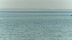 Waterskiing on the bay (2 of 2) Stock Footage