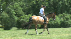 Rider warms up horse Stock Footage