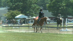 Horses prepare for competition (1 of 3) Stock Footage