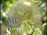 Stock Video Footage of 0704 Mis Quince anos Sweet 15