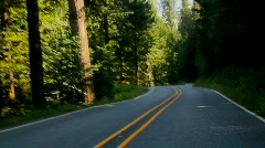 POV Highway driving 03 - forest time lapse - stock footage