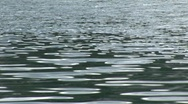 Stock Video Footage of soft wrinkling water
