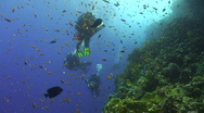 Stock Video Footage of Technical diver exploring coral reef