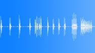 Stock Sound Effects of Multiple camera shutter clicks, SFX