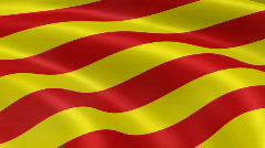 CataloniaFlag Stock Footage