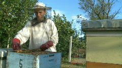 Beekeeper and bees in the hive Stock Footage
