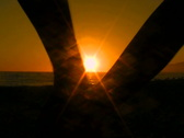 Couple walks into sunset V2 - NTSC Stock Footage