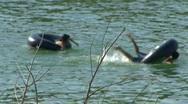 People Swimming In Lake Travis Stock Footage