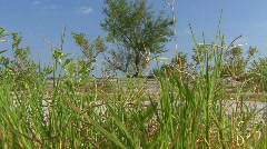 Landscapes From Texas Stock Footage