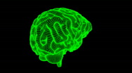 Stock Video Footage of Looping Glow Wireframe Brain Animation 22