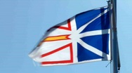 Stock Video Footage of Newfoundland Flag