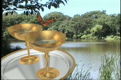 1427 butterfly wedding toast - stock footage