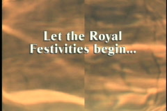 1013 let the festivities begin reception Stock Footage